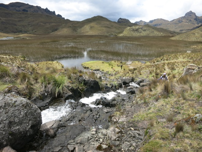 Cajas National Park, Cuenca, Ecuador